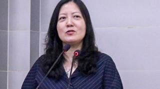 Pu Ping 蒲俜 | Renmin University School of international Studies